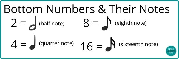 Bottom numbers for time signatures.