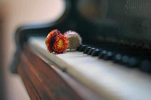 Understanding Piano Chords