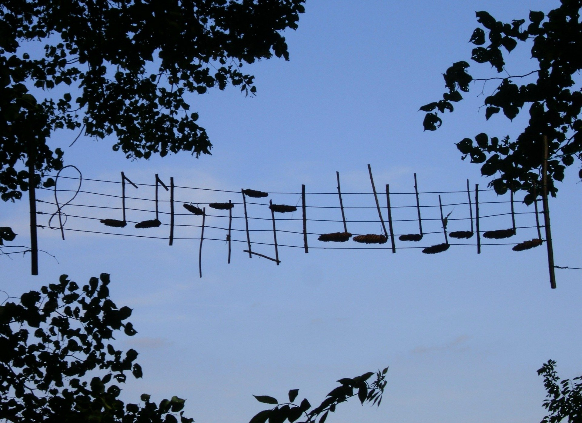 What Is Musical Rhythm